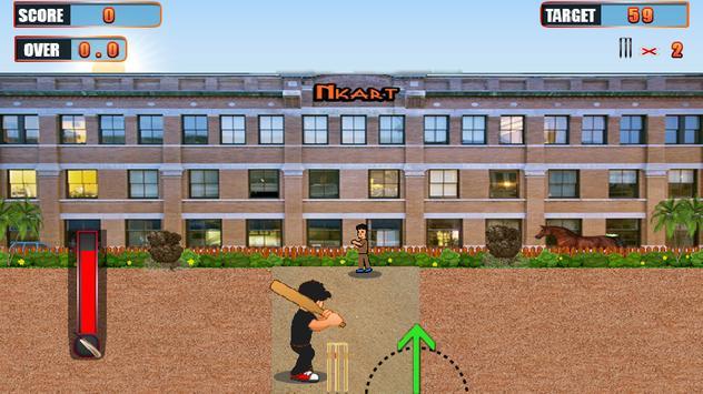 Gully Cricket Pro apk screenshot