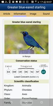 Birds Of Western Africa (old version) screenshot 4