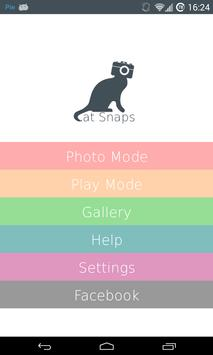 Cat Snaps-poster
