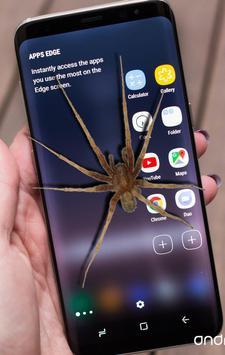 Spider On Screen Scary Joke - Hissing Joke poster
