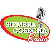 SIEMBRA COSECHA RADIO icon