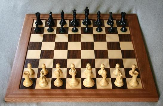 Шахматы [Chess] poster
