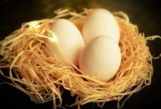 Яйца poster