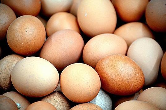 Яйца screenshot 2