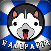Husky Wallpaper HD icon