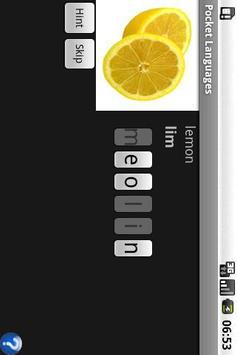 Pocket Languages apk screenshot