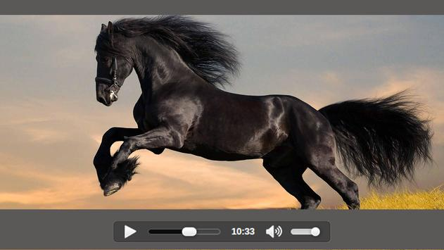 Video Player: HD Media Play for All Formats screenshot 3