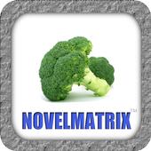 Vegetarian World - Recipes icon