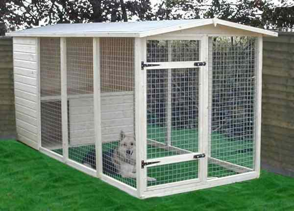 Outdoor Dog Kennel Ideas For Android Apk Download