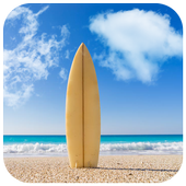 Skateboard Surf Puzzle icon
