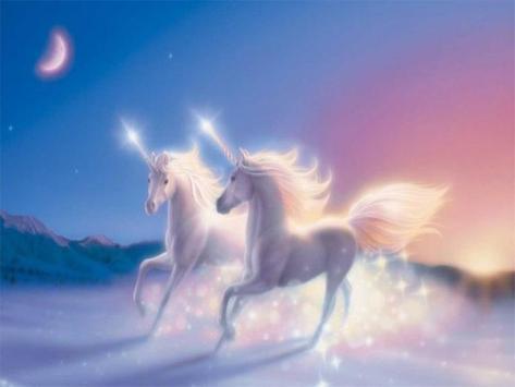Dream Unicorn Puzzle apk screenshot
