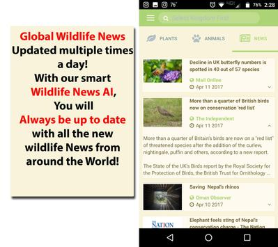 Search Wildly apk screenshot