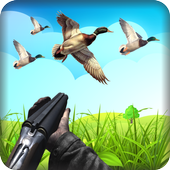 Duck Hunting HD icon