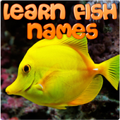 Learn Fish Names icon
