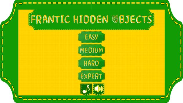 Frantic Hidden Objects poster