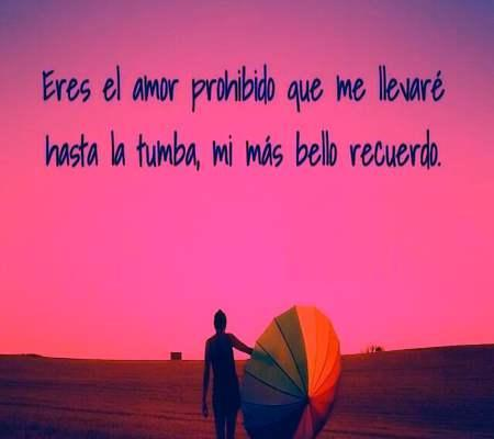 Frases Para Un Amor Imposible Imagenes For Android Apk