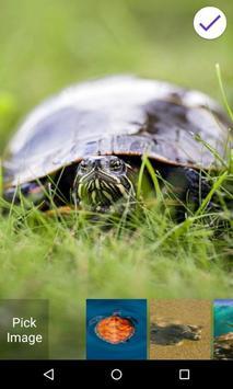 Turtle Lock Screen screenshot 5