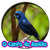 O Canto Do Azulao icon