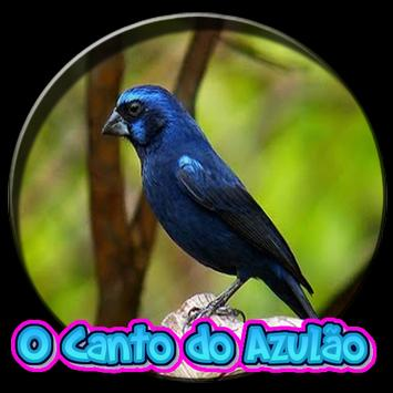 O Canto Do Azulao poster