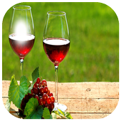 Bottle Glass PhotoFrame icon