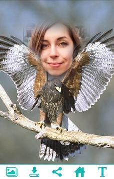 Falcon Photo Frame apk screenshot