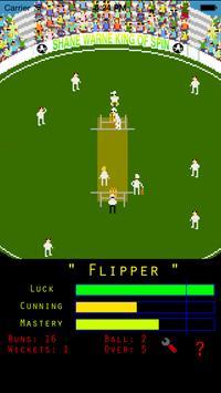 Shane Warne - KoS Mini Bowling apk screenshot