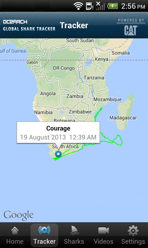 Global Shark Tracker for Android - APK Download