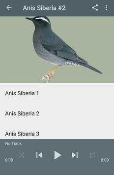 Kicau Anis Siberia Gacor Juara screenshot 3