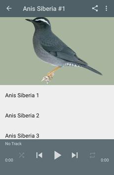 Kicau Anis Siberia Gacor Juara screenshot 2