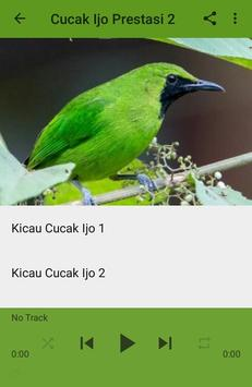 Kicau Cucak Ijo Gacor Prestasi apk screenshot