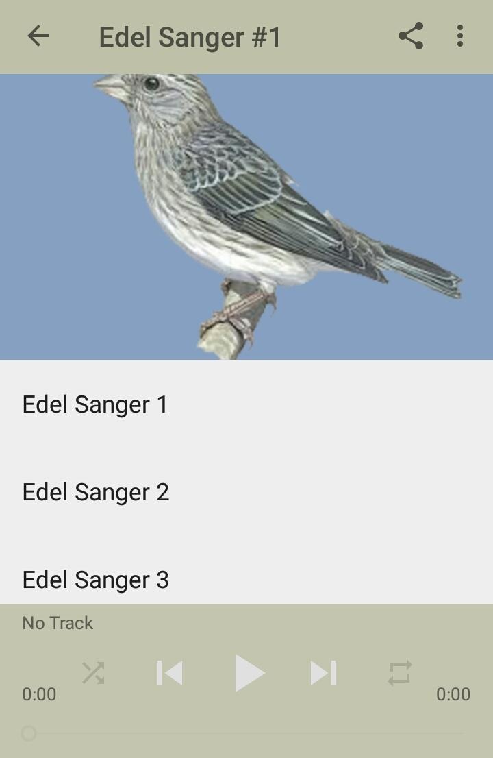 Kicau Edel Sanger Gacor Juara For Android Apk Download