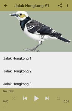 Kicau Jalak Hongkong Gacor Top apk screenshot
