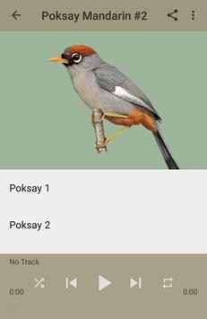 Kicau Poksay Mandarin Gacor screenshot 3