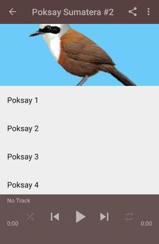 Kicau Poksay Sumatera Gacor screenshot 3