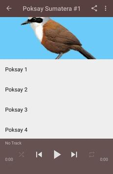 Kicau Poksay Sumatera Gacor screenshot 2