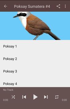Kicau Poksay Sumatera Gacor screenshot 5