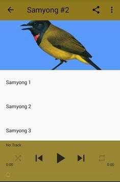 Kicau Samyong Gacor Prestasi screenshot 2