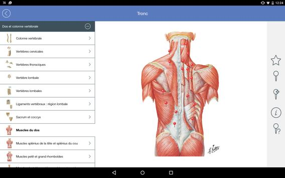 Mémofiches Anatomie Netter APK Download - Free Medical APP for ...