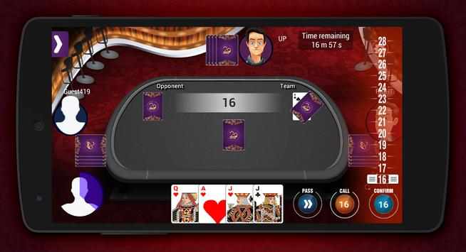 29 Card apk screenshot