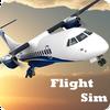 Flight Sim 圖標