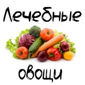 Лечебные овощи icon