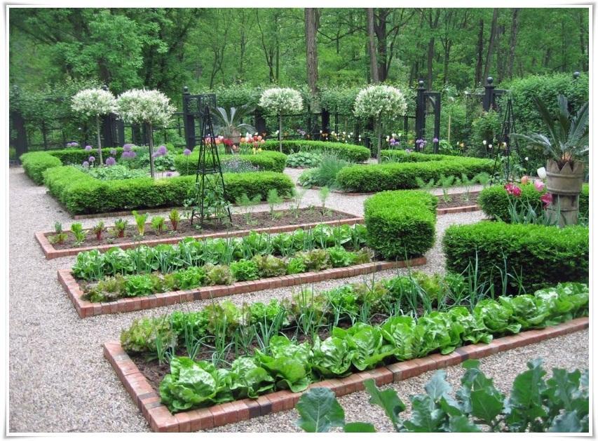 Desain Taman Sayuran Yang Populer For Android - APK Download