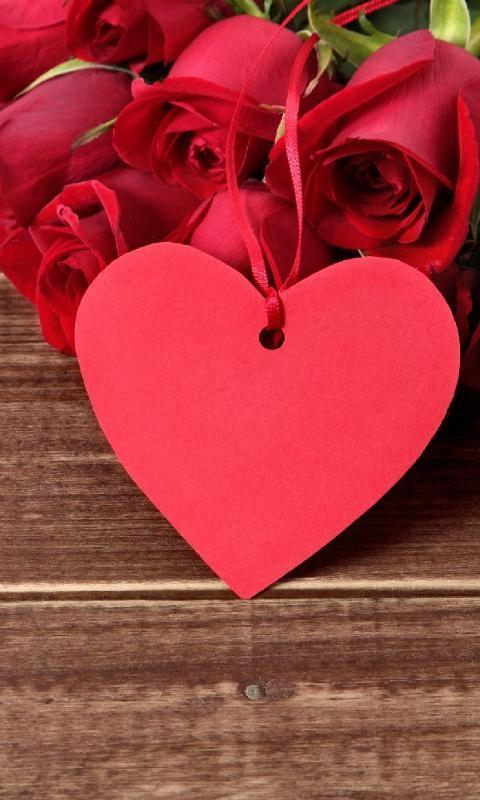 3d True Love Red Rose Themes Wallpapers For Android Apk