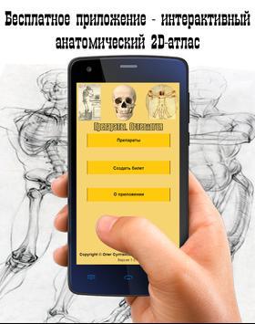 Препараты. Остеология poster