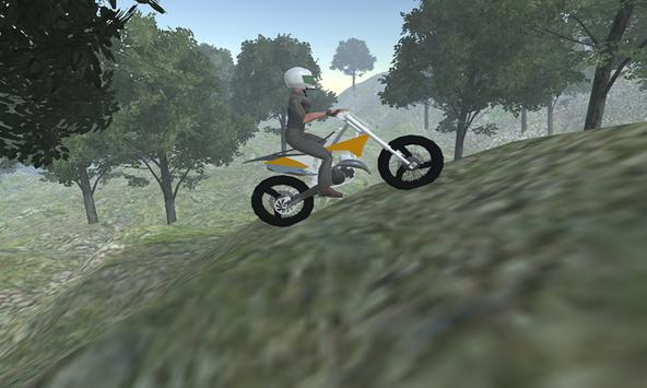 Hill Motorbike Game screenshot 3