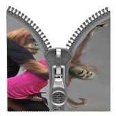 Monkeys Romantic Zipper icon
