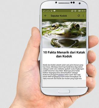 Kodok Ngorek apk screenshot