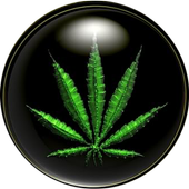 Weed HD Wallpapers icon