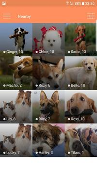 Dogmatch screenshot 3