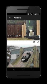 Pandaria: Stay positive apk screenshot